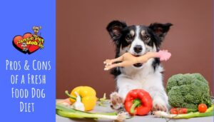 Pros & Cons of a Fresh Food Dog Diet